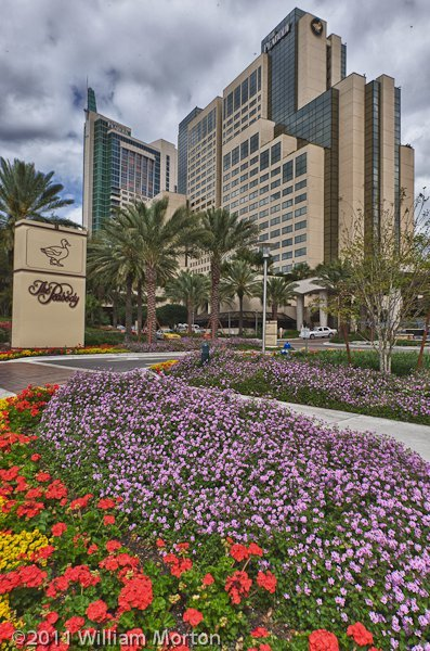 HDR image of the beautiful Peabody in Orlando FL